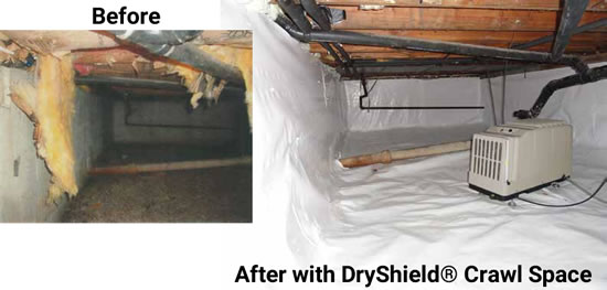 Crawl space repair near you dry basement - This gas helps keep swimming pools clean ...